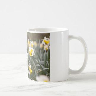 ウェールズのラッパスイセンのデザインの白くクラシックなマグ コーヒーマグカップ