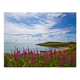 ウェールズの北の海岸線 ポストカード