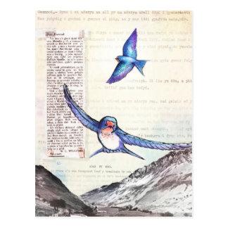 ウェールズの谷の鳥 ポストカード