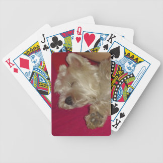 ウエスト・ハイランド・ホワイト・テリア犬のトランプ バイスクルトランプ