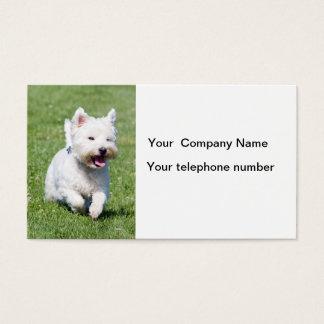 ウエスト・ハイランド・ホワイト・テリア犬の名刺 名刺