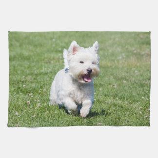 ウエスト・ハイランド・ホワイト・テリア、westie犬のかわいい写真 キッチンタオル