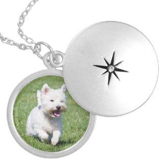 ウエスト・ハイランド・ホワイト・テリア、westie犬のかわいい写真 ロケットネックレス