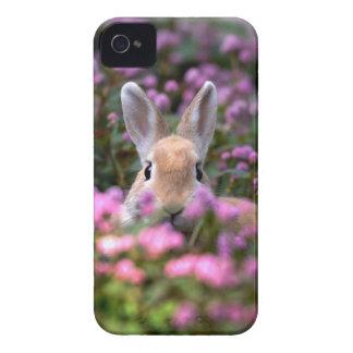 ウサギの農場 Case-Mate iPhone 4 ケース