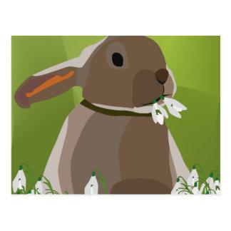 ウサギの食べ物のsnowdrops ポストカード