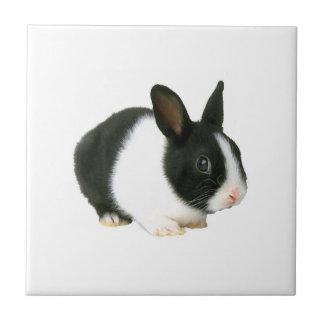 ウサギの黒く及び白いタイル タイル