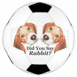 ウサギを言いましたか。 ビーグル犬 サッカーボール
