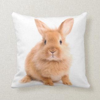 ウサギ クッション