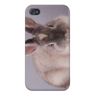 ウサギ、シンプルな背景、動物、白いテーブル、 iPhone 4 ケース