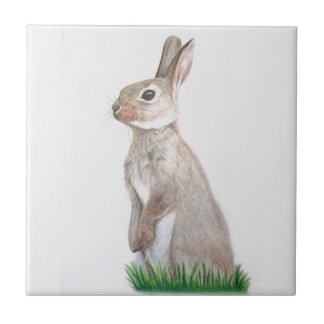 ウサギ タイル