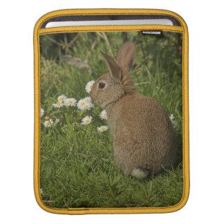 ウサギiPad2の袖 iPadスリーブ