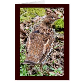 ウズラのライチョウの鳥の野性生物動物 グリーティングカード