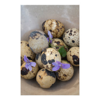 ウズラの卵及び花7533 便箋