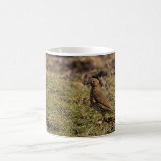ウタツグミ コーヒーマグカップ