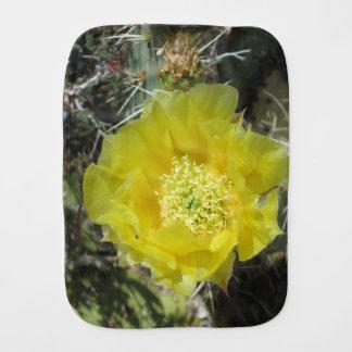 ウチワサボテンの黄色の開花の終わり バープクロス