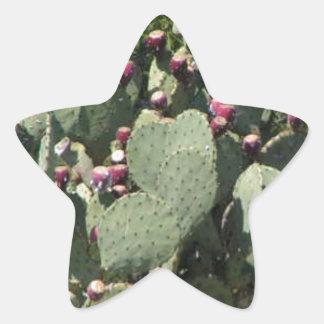 ウチワサボテンサボテン 星シール