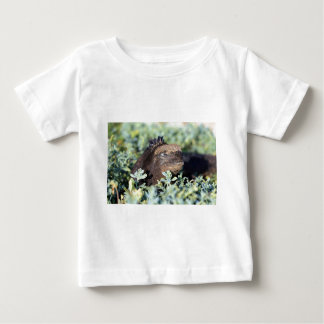 ウミイグアナの日光浴をするガラパゴス諸島 ベビーTシャツ