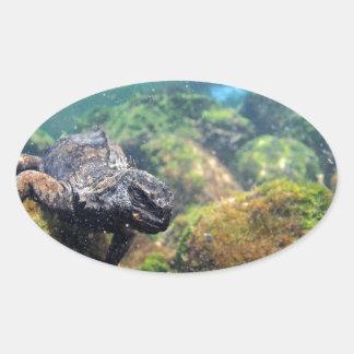 ウミイグアナの水中ガラパゴス諸島 楕円形シール