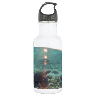 ウミガメの水中日の出の海の楽園 ウォーターボトル