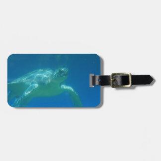 ウミガメの水泳の荷物のラベル ラゲッジタグ