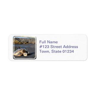 ウミガメの郵送物のラベル ラベル