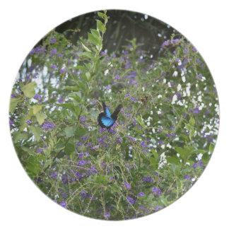 ウリッセースの蝶田園クイーンズランドオーストラリア プレート