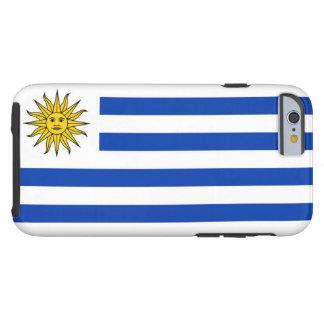 ウルグアイの旗 ケース