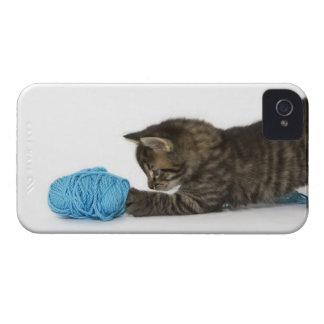 ウールと遊んでいる若い虎猫の子ネコ Case-Mate iPhone 4 ケース