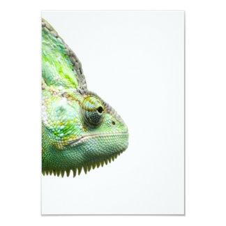 エキゾチックなハ虫類 カード