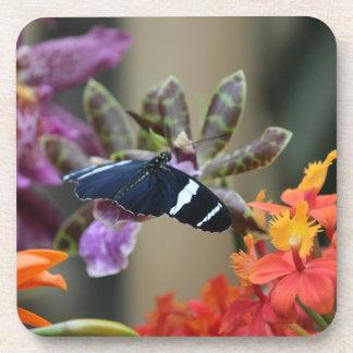 エキゾチックな蝶コルクのコースター コースター