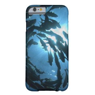 エクアドルのガラパゴスの多島海、オオカミの島、 BARELY THERE iPhone 6 ケース