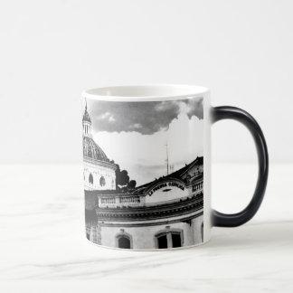 エクアドルのマグ: 眺めを楽しんで下さい! モーフィングマグカップ