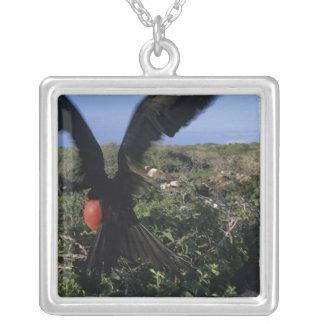 エクアドルの壮麗なガラパゴス諸島 シルバープレートネックレス