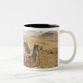 エジプト、カイロ。 を渡る休息のラクダの熟視 ツートーンマグカップ