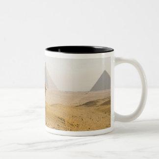 エジプト、カイロ。 単独ラクダはを渡って熟視します ツートーンマグカップ