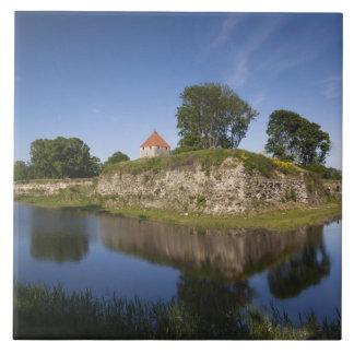 エストニアのエストニアの西部の島、Saaremaa 2 タイル