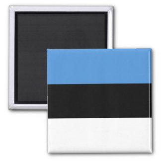 エストニアの旗EE マグネット