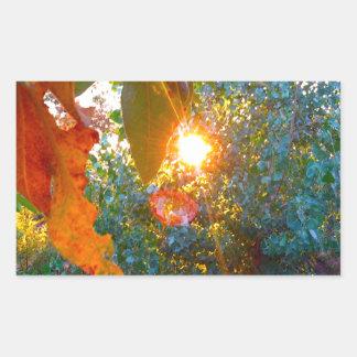エデンの日没 長方形シール
