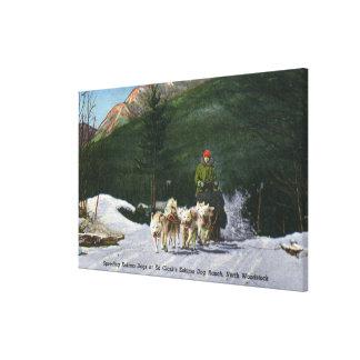 エドクラークのエスキモー犬牧場、Dogsledding キャンバスプリント