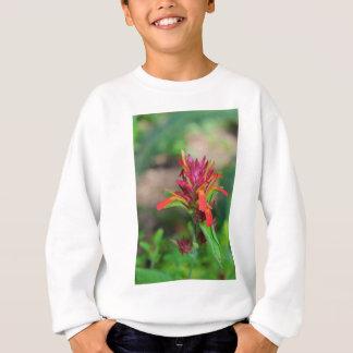 エビの植物 スウェットシャツ