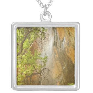 エメラルドのプールの滝の赤い石および木を下げて下さい シルバープレートネックレス