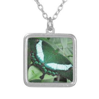 エメラルドの(孔雀の)アゲハチョウ シルバープレートネックレス