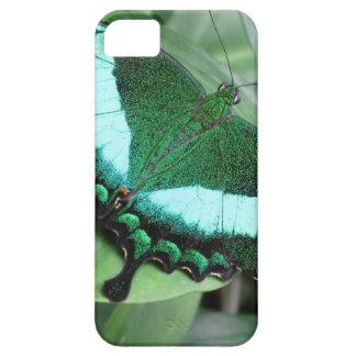 エメラルドの(孔雀の)アゲハチョウ iPhone 5 ベアリーゼアケース