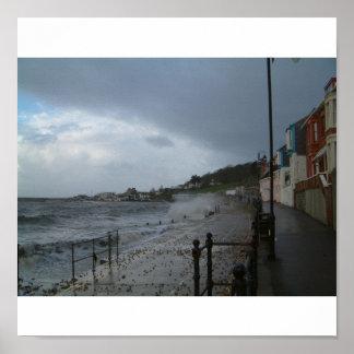 エリマキシギ海のLyme Regis ポスター