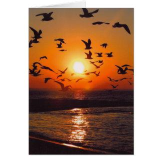 エリー湖の日没 カード