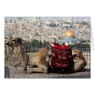 エルサレムのcolosの世界、ラクダ カード