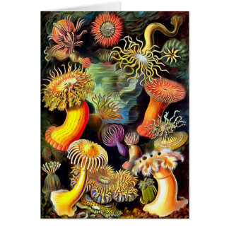 エルンスト・ヘッケルのいそぎんちゃくのヴィンテージの芸術 カード