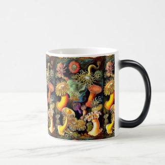 エルンスト・ヘッケルのいそぎんちゃくのヴィンテージの芸術 モーフィングマグカップ