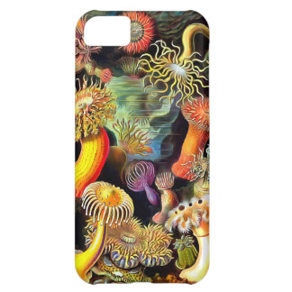 エルンスト・ヘッケルのいそぎんちゃくのヴィンテージの芸術 iPhone 5C ケース