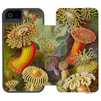 エルンスト・ヘッケルのActinaeの海の生命 Incipio Watson™ iPhone 5 ウォレット ケース